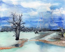Dead trees in a lake during a storm by HaleyGottardo