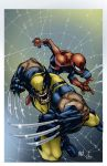 Wolverine and Spiderman by albieart
