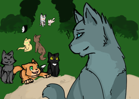 TheOldThunderclan. by xBadgerclaw