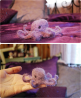 Octopus by Ninapedia