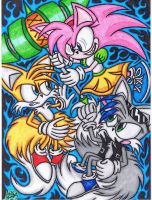 .:FanART Request:.Tails And Lukas VS Rosy Rascal by AceOfSpeed94