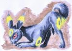 Umbreon by NikiKalat