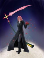 Marluxia - Kingdom Hearts by claes-gascogne