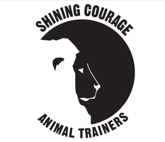 My animal trainer logo by tritie