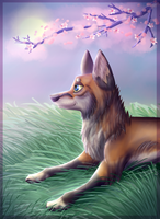IldRev's contest entry - Spring blossoms by Afna2ooo