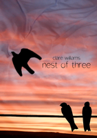 Clare Williams: Nest of Three by Hashnoerej