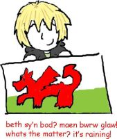 welsh attitude XD by simplyfrank