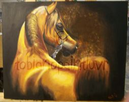 Chestnut Arabian Oil Painting by tobianopaintluvr