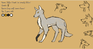 Silver character sheet by wolf--eyes