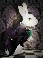 The White Rabbit by MADmoiselleMeli