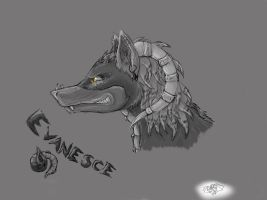 Evanesce - Side by InfernalEvanesce