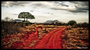 Tsavo,Fin de piste ... by Bestarns
