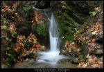 Colors of Autumn - Waterfall by stetre76