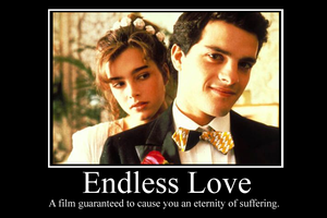 Endless Love Demotivator by Party9999999