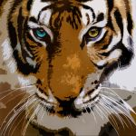 Eye of the Tiger by Teg101