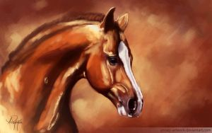 Horse by AnnaP-Artwork