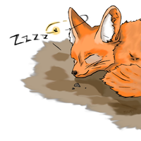 Fennec Sleeping by Malakhite