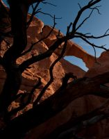 Skyline Arch And Branches by jamezevanz