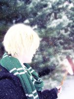 Draco- In The Snow-1 by vladimirmasters