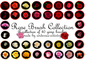 Rose Image Pack by undersea-artistry