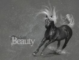 Obsidian Beauty by Delun