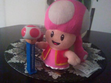 Toadette loves her Toad Pez by Tommypezmaster