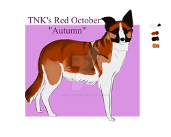 TNK's Red October 'Autumn' by TopNotchKennels