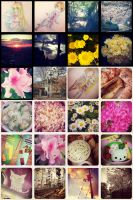 my Instagram photos by kindaseiha