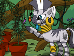 Zecora's Herbs by THAT1ANDONLY