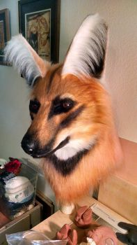 Maned Wolf WIP by netherdenstudio
