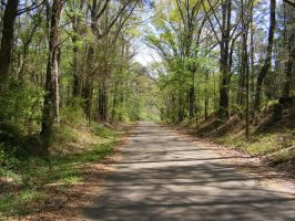 Mississippi Country Road by deviantmike423