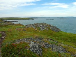 Near l'Anse-Aux-Meadows 2 by LucieG-Stock