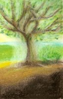 The spirit of the tree by oshuna
