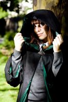 Slytherin...hardly evil by gillykins
