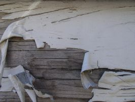 painted wood 13 by juutin-stock