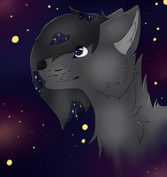 R E-D R A W || Starlight + Speedpaint by Dycare