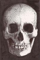 Stippled Skull by melzika