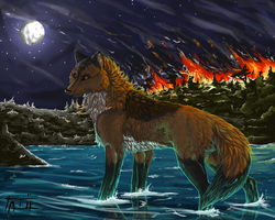Fire and water by tatiilange