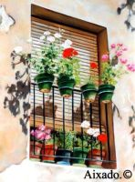 balcon by aixado