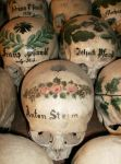 Skulls of Hallstatt by velutinous