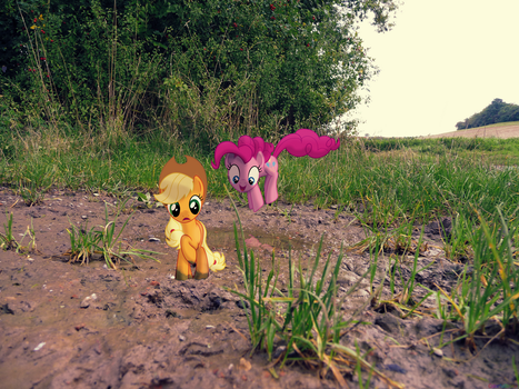 The Hay is this? [PIRL] by colorfulBrony