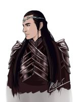 Oh? Elrond ! by MellorianJ