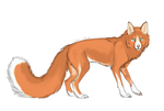 Fox sketch design by Pinkertooon