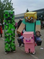 Anime north 2011 Minecraft by Tricia413