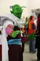 piccolo by predatorman