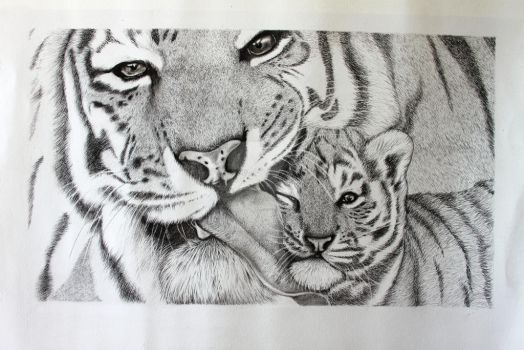Progress Tigers by jintyandrayne