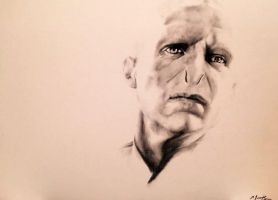 Voldemort Charcoal Drawing by Sampl3dBeans