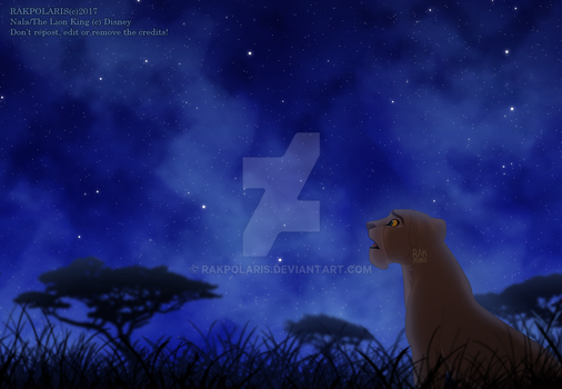TLK - Nala under the stars by RakPolaris