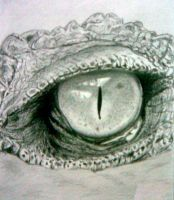 sketch eye crocodile by Deizza