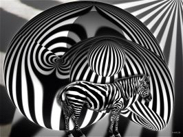 Zebra by marijeberting